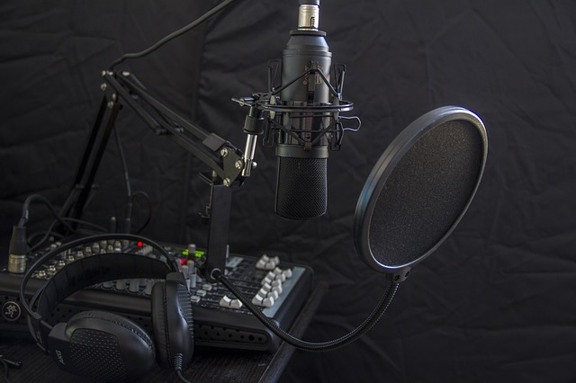 microphone_1431485440