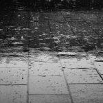 2014/10/05 21世紀も雨の野音 (セットリスト)